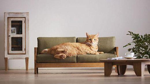 Японці створили меблі для котиків: неймовірно милі фото та відео