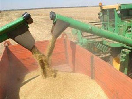 Щороку запаси зерна в Україні зменшуються
