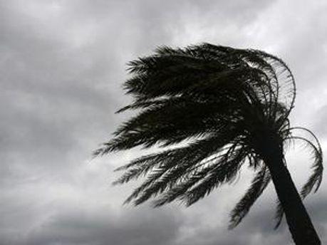 Ураган у США залишив без електрики близько 2,5 тисяч людей