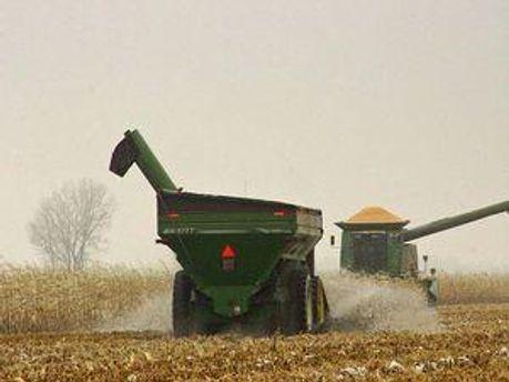 Американська сільськогосподарська продукція завойовує китайський ринок