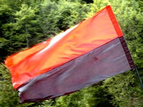 Прапор ОУН-УПА