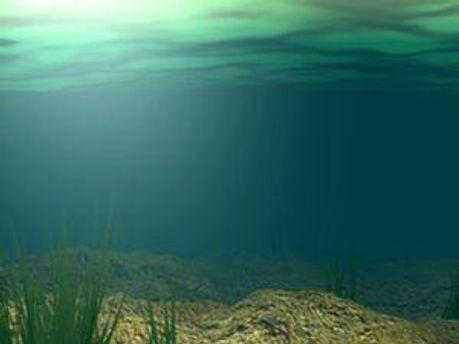 На дні Чорного моря є річка