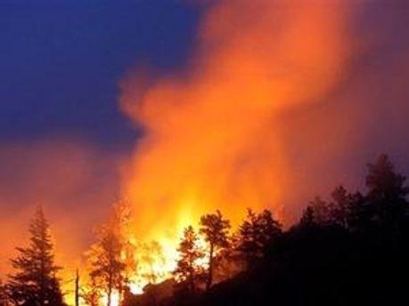 В Україні триває ліквідація лісових пожеж