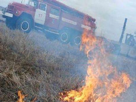 На Київщині загорілась трава