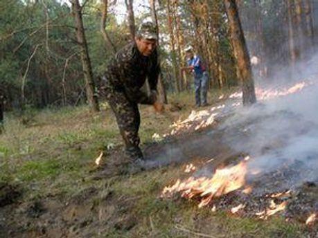 Чимало малих пожеж поширилось Україною