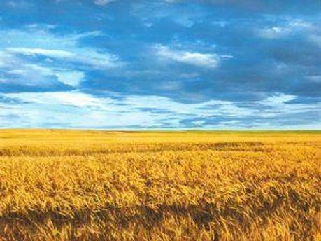 Україна буде цілісною, доки цього захочуть олігархи