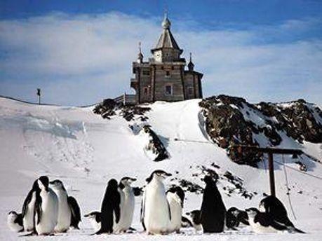 Церква Трійці в Антарктиді
