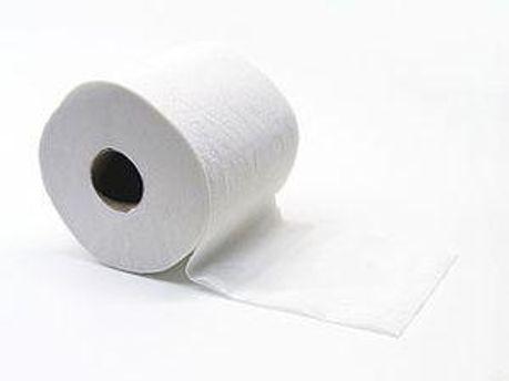 У депутатів немає туалетного паперу
