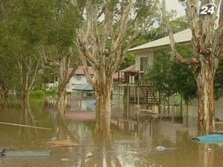 В Австралії від повені потерпають не тільки люди, а й тварини