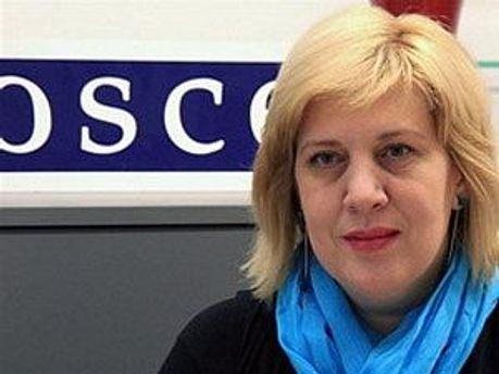 В ОБСЄ готові і далі надавати підтримку Україні