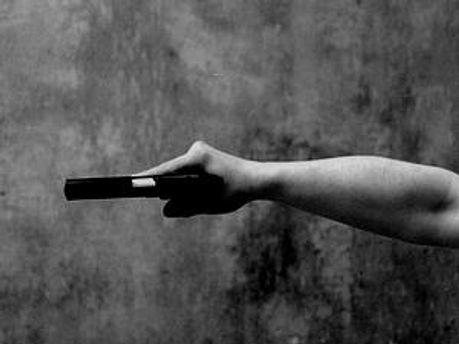 Міліціонеру довелось застосувати зброю