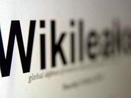 WikiLeaks оприлюднила документ про підготовку перевороту в Єгипті