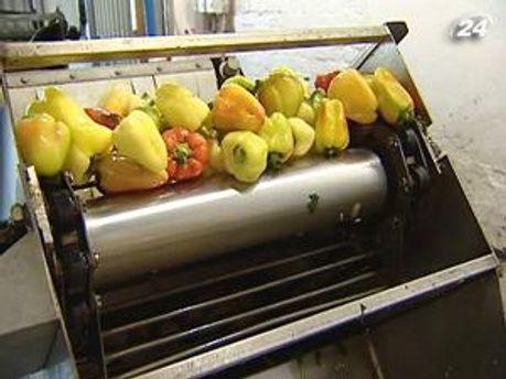Роботу виробників консервації блокують дорогі овочі