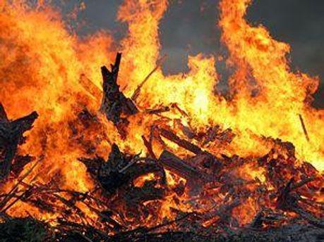Причину пожара устанавливают