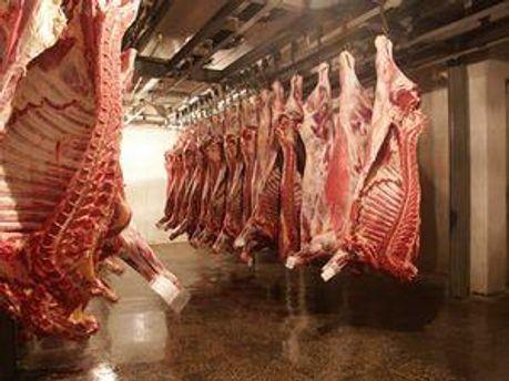 С Госрезерва украли мяса на 10 миллионов