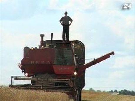 Врожай зерна цього року збільшиться