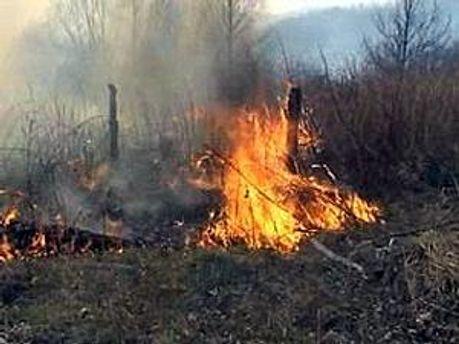 Пожежу оперативно ліквідували