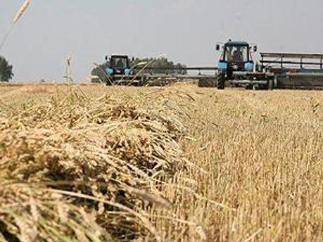 Собрано 30 миллионов тонн зерновых