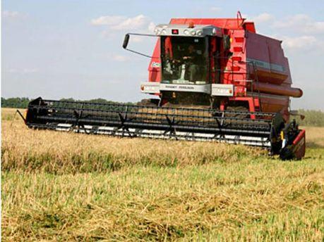 Збір врожаю в Україні триває