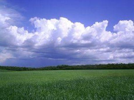 У п'ятницю має бути хмарно, але без опадів