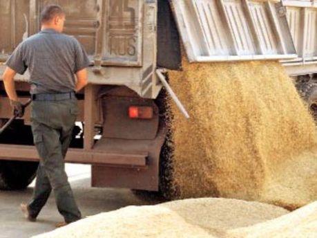 Пшеница отправилась в Саудовскую Аравию