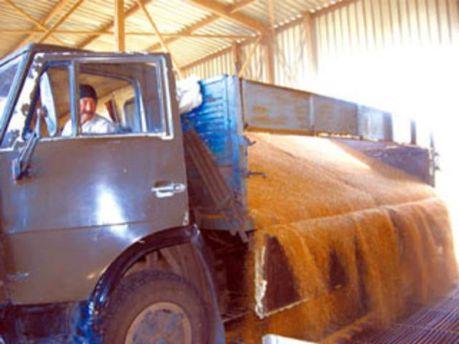 В Україні не буде світових запасів зерна