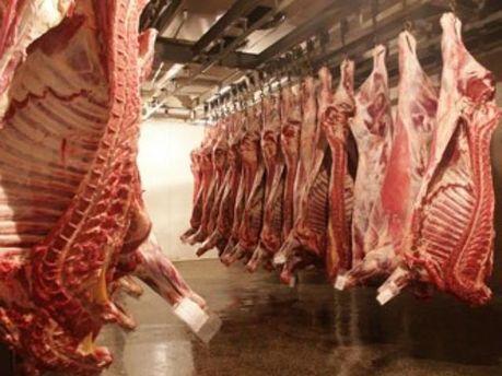 Українського м'яса побільшало на іноземних ринках