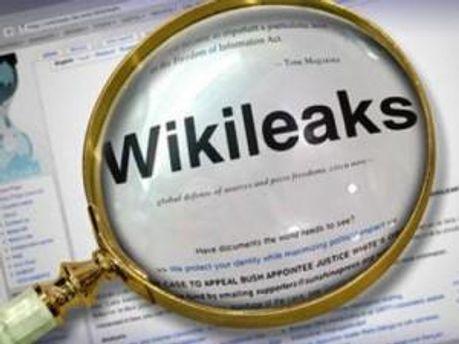 Дэниэль Домшайт-Берг уничтожил архив WikiLeaks