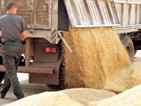 Армяне хотят выращивать собственные зерновые