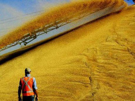 Зерно из России уменьшило динамику роста экспорта Украины