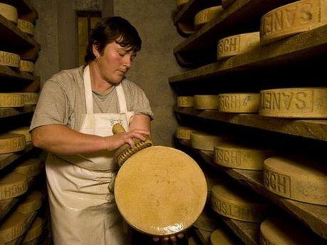 Мир может остаться без швейцарских сыров