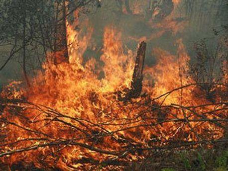 На вихідні зросла небезпека пожеж