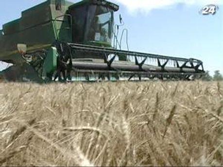 Поставки зерновых нового урожая на внешние рынки почти остановились