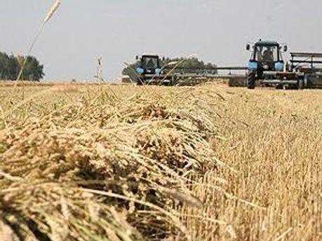 Азаров хоче збільшити експорт зерна