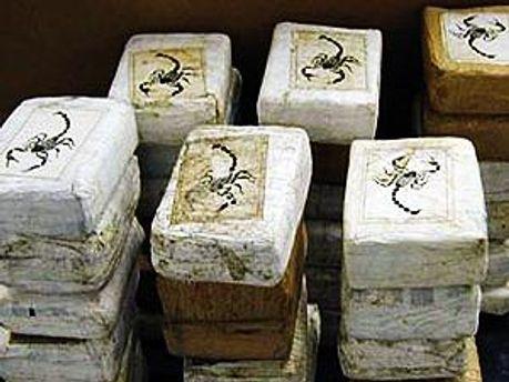 Полиция обнаружила полтонны кокаина