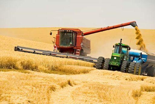 В Уряді сподіваються зібрати урожай згідно прогнозів