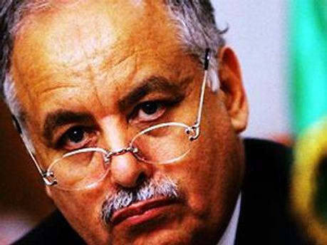 Екс-прем'єр-міністр Лівії Багдаді Махмуді