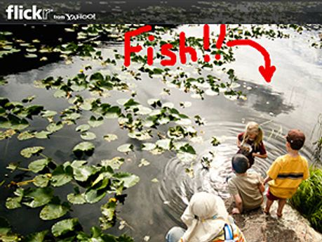 Принтскрін нової функції на Flickr