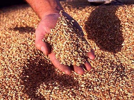 Українське зерно хочуть проконтролювати єгиптяни