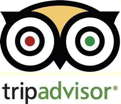 Подозрительный комментарий TripAdvisor оставил отель без клиентов