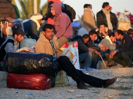 Количество незаконных мигрантов в Украине уменьшилось в 2,5 раза