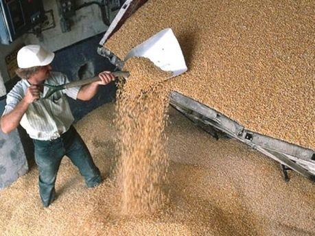 Украина соберет рекордный урожай зерна