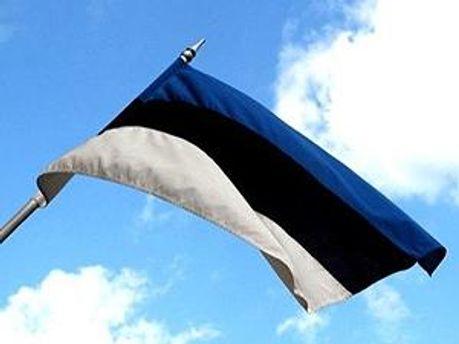 Естонський суд виніс вирок телефонному терористу