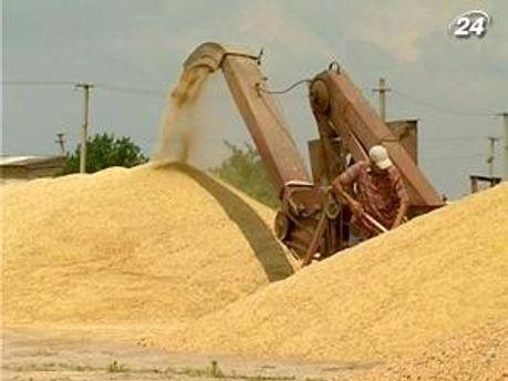 Зерно поедет в страну фараонов