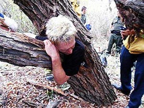 Для чего мужчина залез в дерево, неизвестно