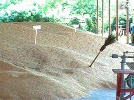 Казахское зерно таки будет продаваться за рубеж