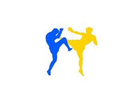 Українці привезли понад 40 медалей