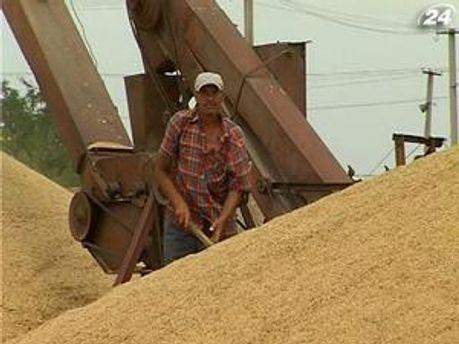 Українське зерно таки їде в Єгипет