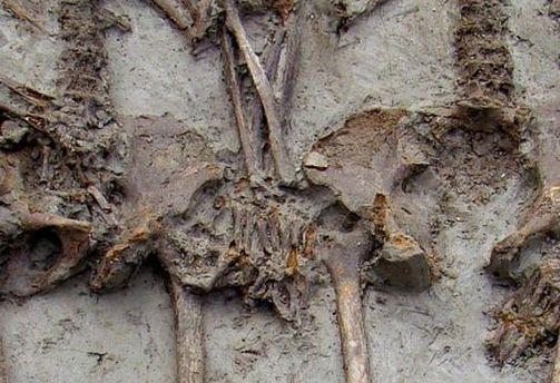 В могилі пара трималась за руки