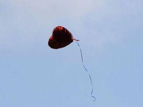 Шарики летели в небо. Шарики для Тимошенко